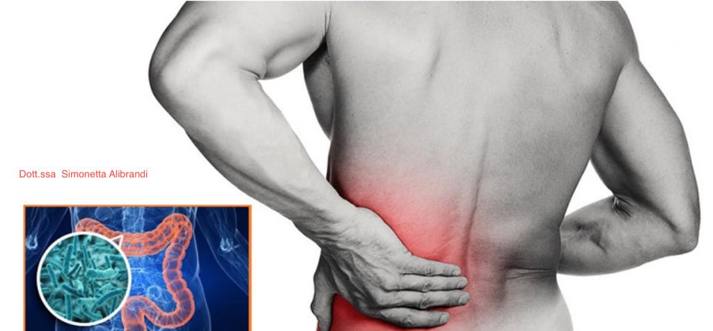 Simonetta alibrandi osteopata roma posturologo mal di schiena colon irritabile psoas rimedi esercizi