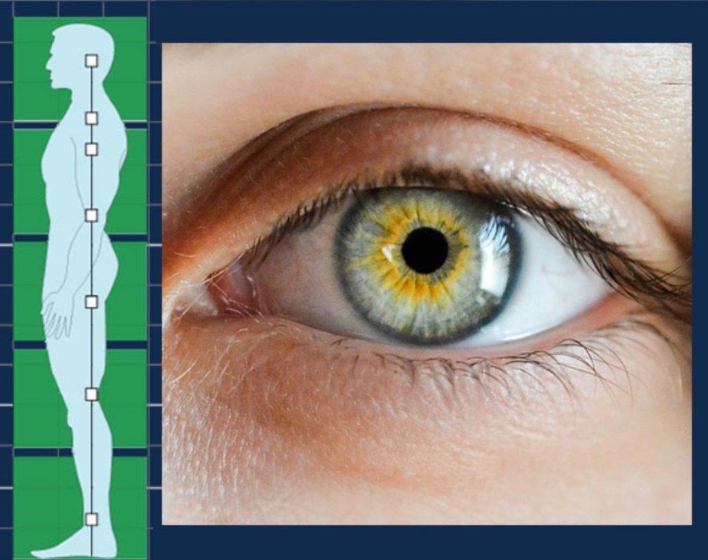 simonetta alibrandi osteopata recettore oculare come può' modificare la postura