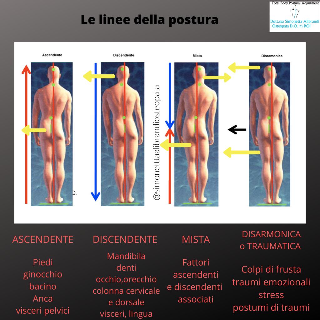 simonetta alibrandi osteopata posturologo roma le linee della postura