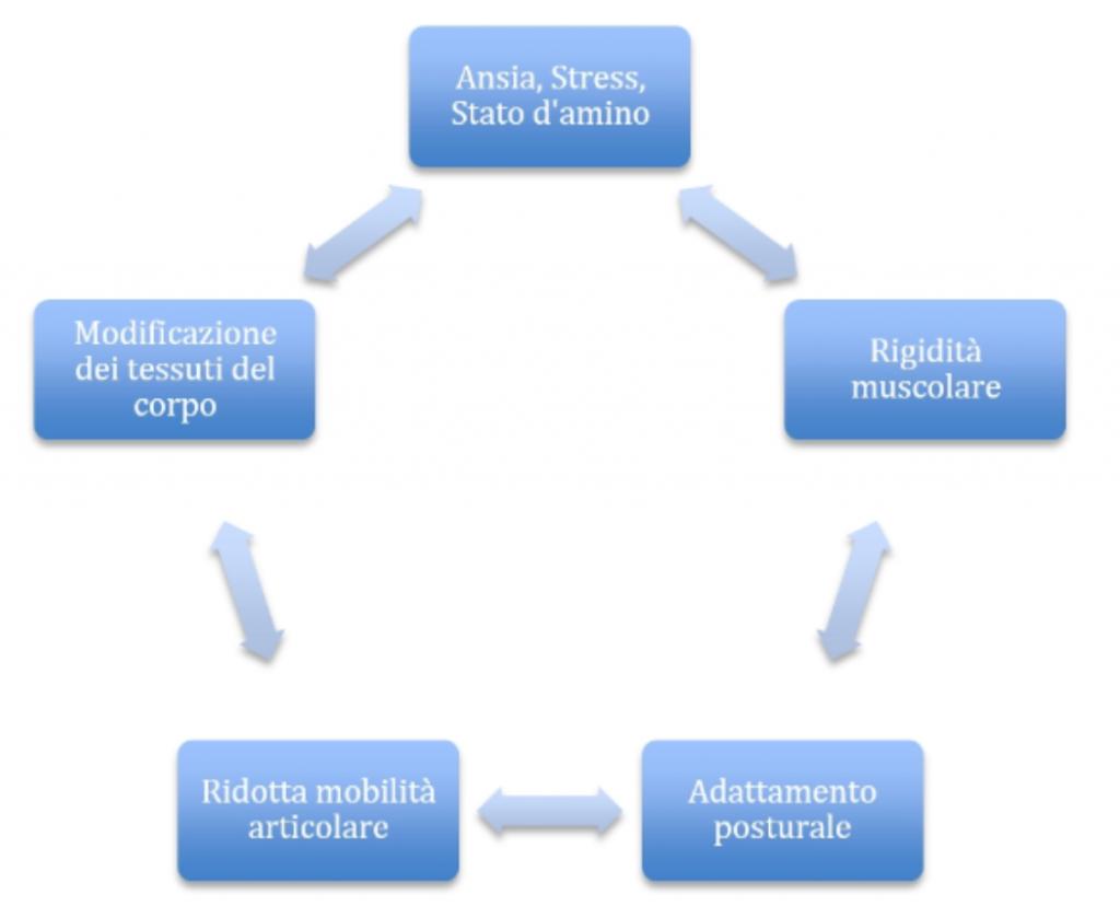 simonetta alibrandi osteopata posturologo stress e postura