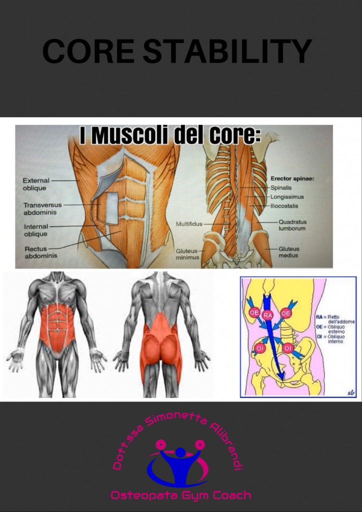 simonetta alibrandi osteopata roma posturologo plank postura corretta core stability