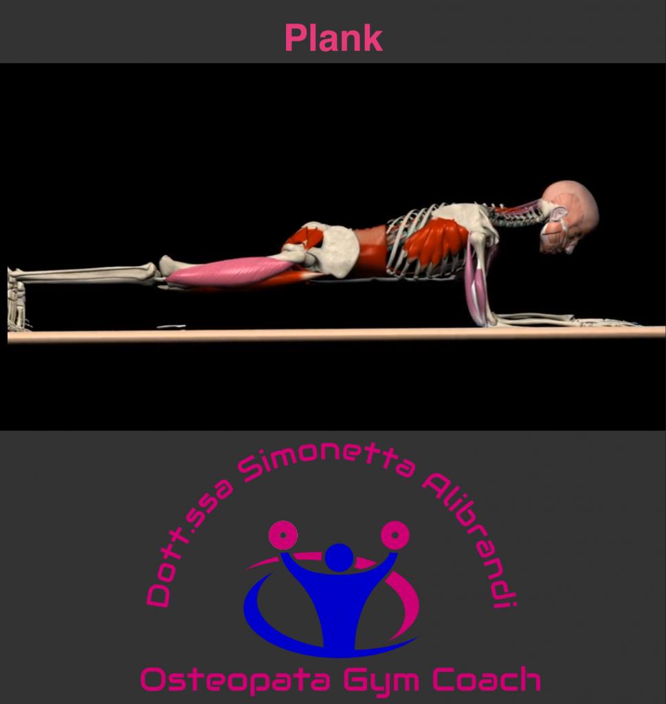 simonetta alibrandi osteopata roma posturologo plank postura corretta
