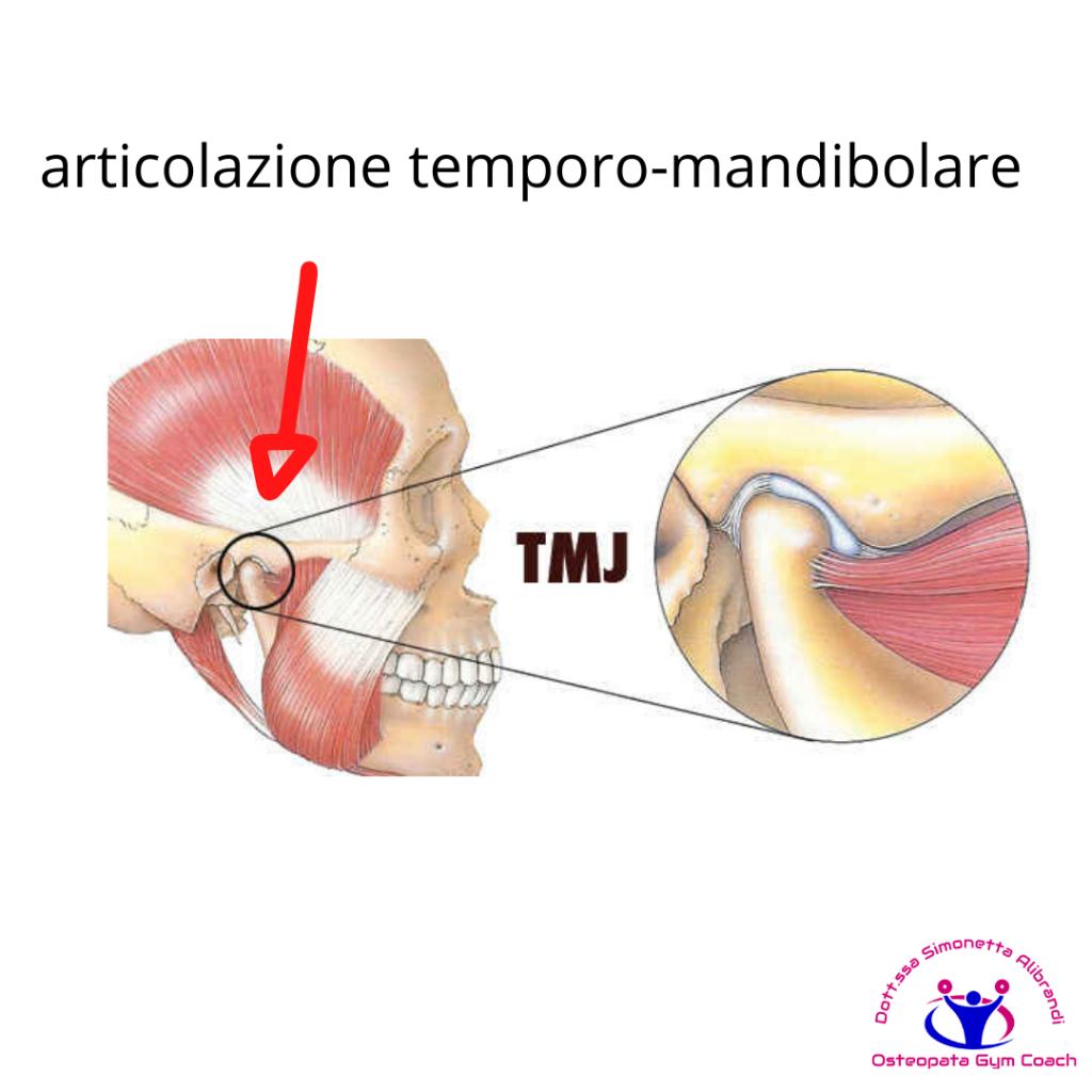 simonetta-alibrandi-osteopata-roma-posturologo-personal-trainer-dolore-alla-spalla-tendinite-lesione-al-sovraspinato-lesione-cuffia-dei-rotatori-tendinopatia-articolazione-temporo-mandibolare