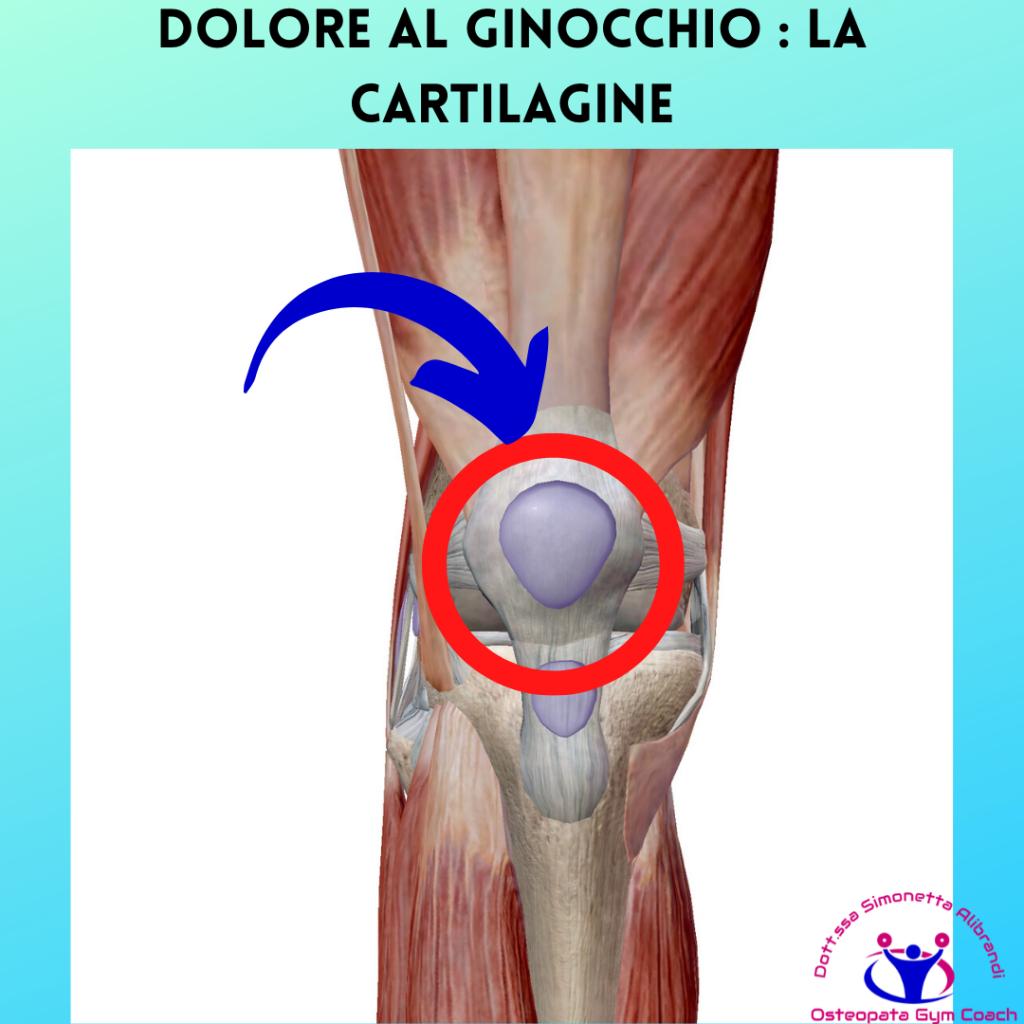Simonetta alibrandi osteopata posturologo personal trainer rimedi esercizi Cause del dolore al ginocchio dovute alla corsa dolore al ginocchio