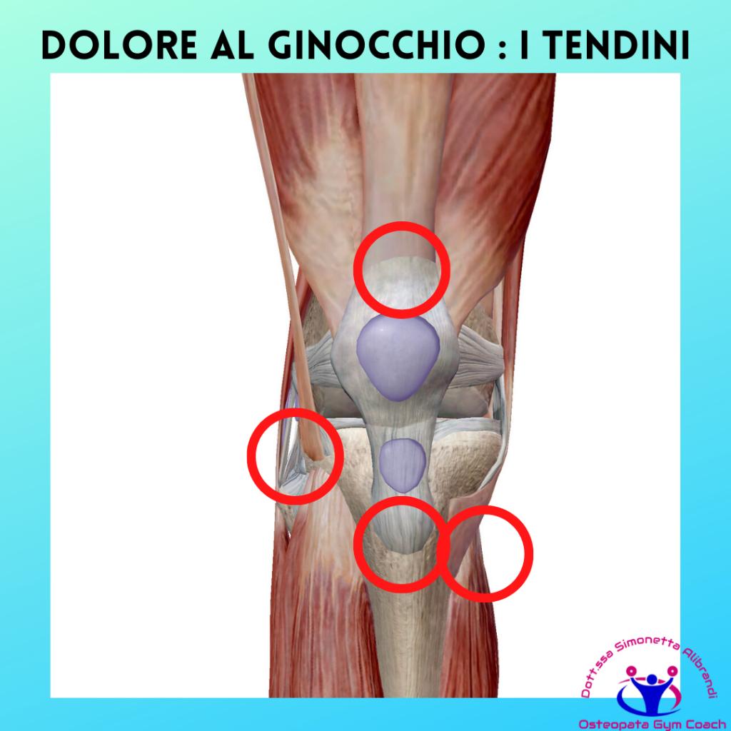 Simonetta alibrandi osteopata posturologo personal trainer rimedi esercizi Cause del dolore al ginocchio dovute alla corsa dolore al ginocchio tendinopatie